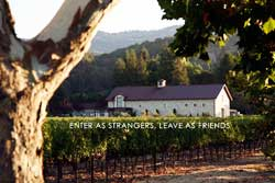 dog friendly winery in napa valley